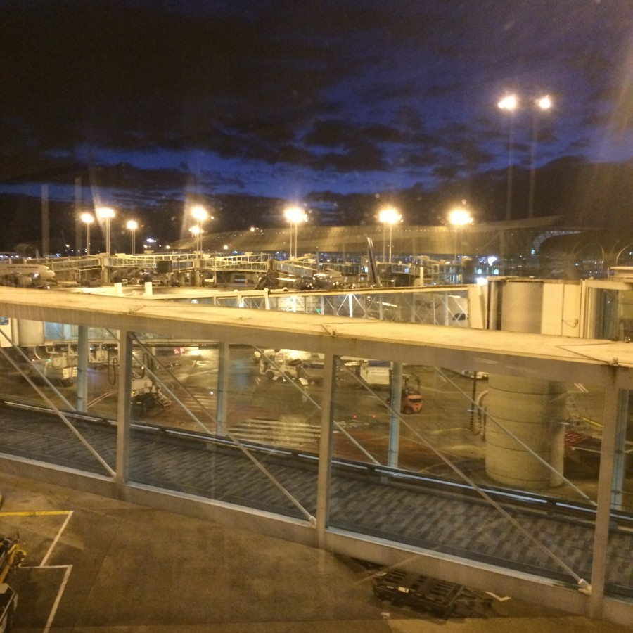 airport Charles De Gaulle 2016